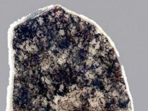 ht_fossils01_lb_150204_4x3_992